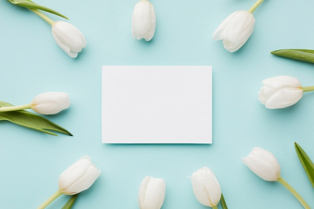 Tulpe blüht mit blattanordnung und leerer weißer karte