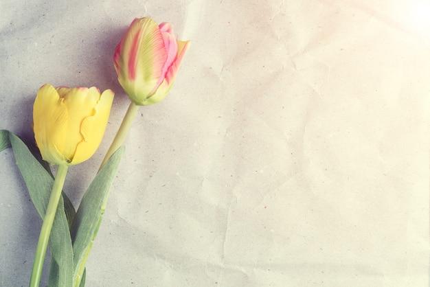 Tulpen auf altem papier, weinlesebeschaffenheitshintergrund.