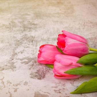 Tulpen auf einer hellgrauen hintergrundnahaufnahme.