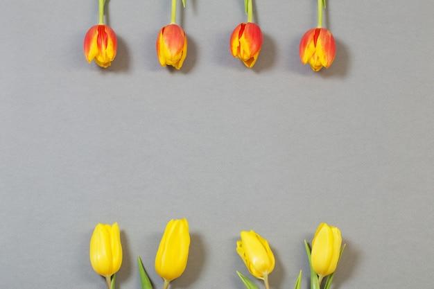 Tulpen auf grauer papieroberfläche