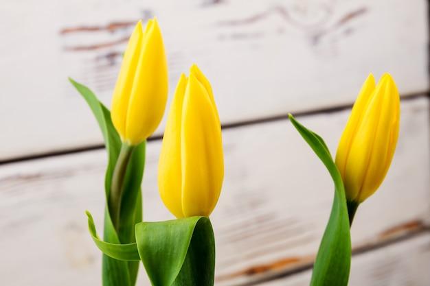 Tulpen auf hellem holzhintergrund frische blumen mit blättern schöne ergebnisse der gartenarbeit am meisten ...