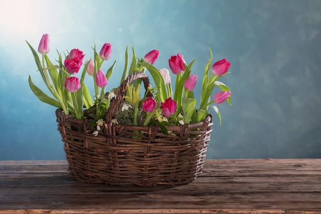 Tulpen im alten korb auf blau