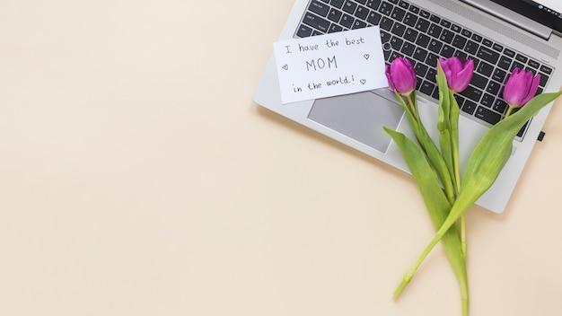 Tulpen mit ich habe die beste mutter der welt inschrift