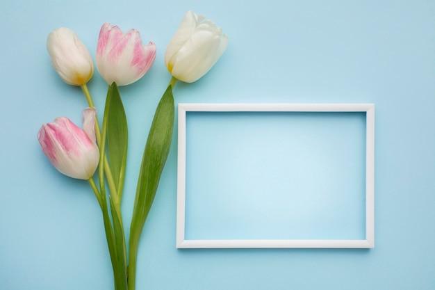 Tulpen mit rahmen daneben