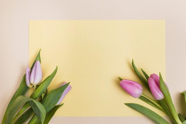 Tulpen und gelbes leeres papier