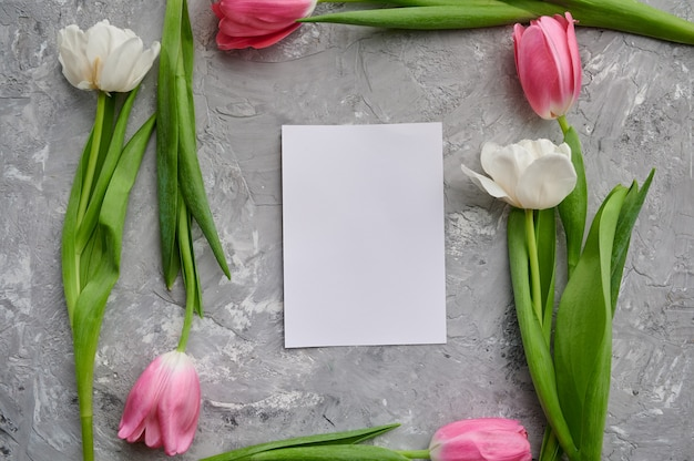 Tulpenrahmen und grußkarte auf grauem hintergrund des schmutzes. blühende frühlingsblumen, frische blumendekoration, grüne frische, romantisches geschenk