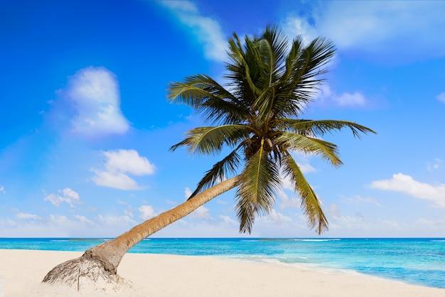 Tulum karibischer strand in riviera maya