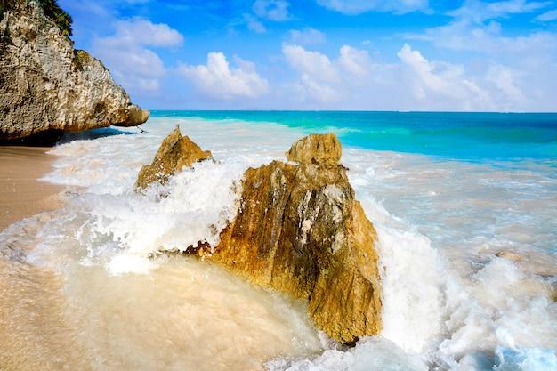 Tulum-strandpalme in riviera maya