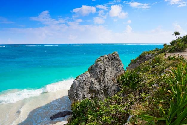 Tulum-türkis-strandpalme in riviera maya am maya