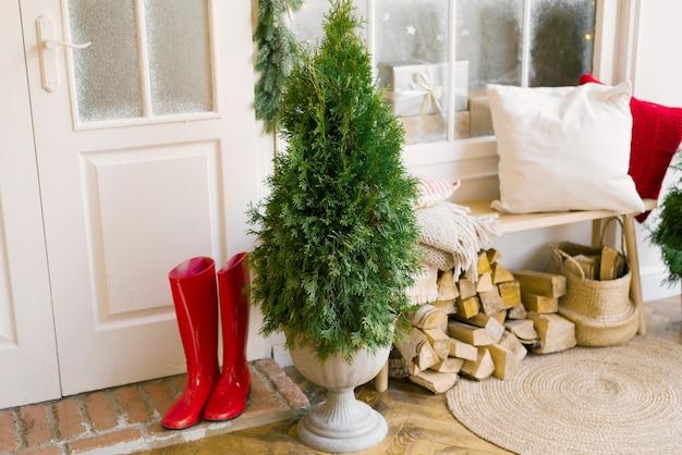 Tuya anstelle eines weihnachtsbaumes in einer vase steht in der nähe der eingangstür zum haus