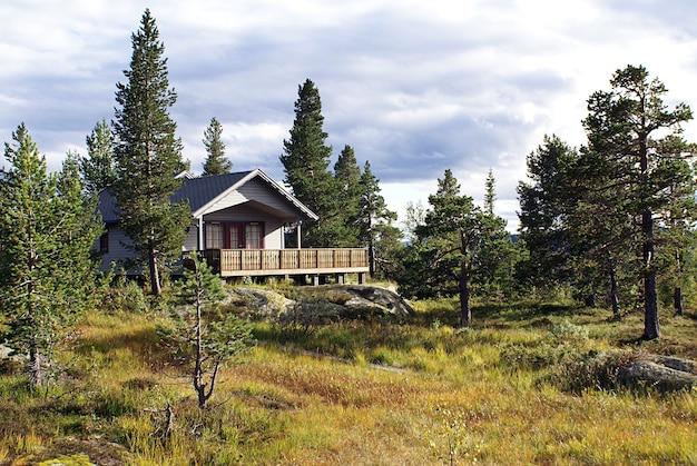 Typisch norwegisches landhaus mit atemberaubender landschaft und wunderschönem grün in norwegen