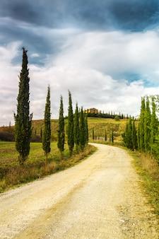 Typische landschaft der toskana. eine zypressenallee, die zu einem bauernhof im val d'orcia führt.