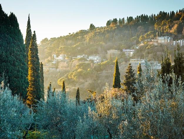 Typische toskanische landschaft in der nähe von florenz