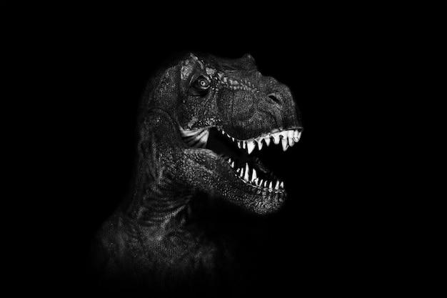 Tyrannosaurus rex nah oben auf dunklem hintergrund.