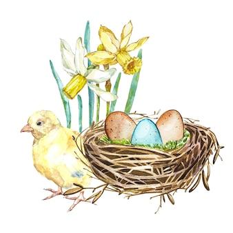 Übergeben sie gezogenes aquarellkunst-vogelnest mit eiern und frühlingsblumen, hahn, ostern-design