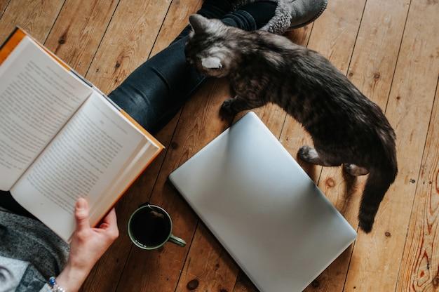 Überkopfaufnahme einer flauschigen katze, frau, die ein buch, einen laptop und eine tasse tee auf dem boden liest