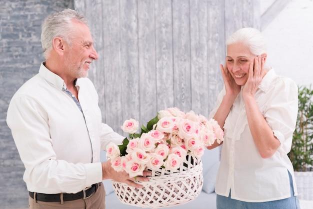 Überraschte ältere frau, die den korb der rosen gehalten von ihrem glücklichen ehemann betrachtet