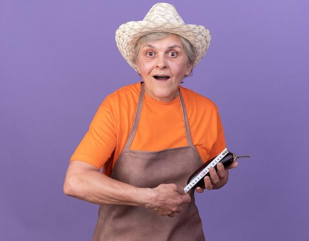 Überraschte ältere gärtnerin mit gartenhut, die aubergine mit maßband misst measuring