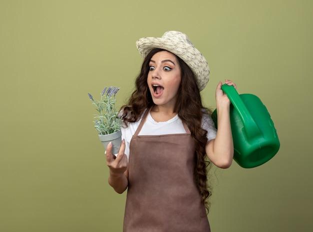 Überraschte junge gärtnerin in uniform mit gartenhut hält gießkanne und betrachtet blumen im blumentopf isoliert auf olivgrüner wand