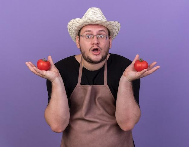 Überraschter junger männlicher gärtner, der gartenhut trägt, der tomaten lokalisiert auf blauer wand hält