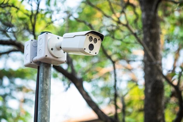 Überwachungskamera auf dem pfosten im park.