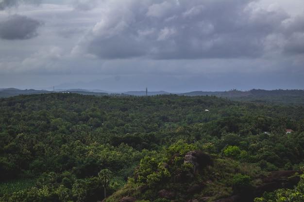Üppige grüne landschaft