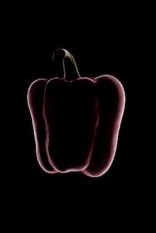 Umriss der roten paprika über schwarz