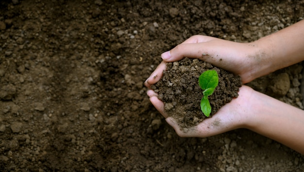 Umwelt earth day-konzept