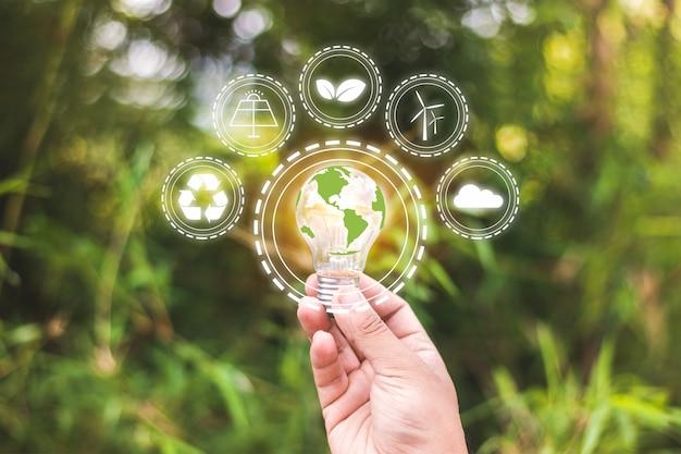 Umwelt und alternatives energiekonzept. glühbirnen mit symbolen, die erneuerbare energien und die umwelt zeigen.