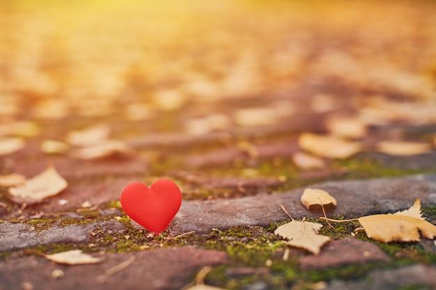 Unerwidertes, einseitiges liebes- oder einsamkeitskonzept.