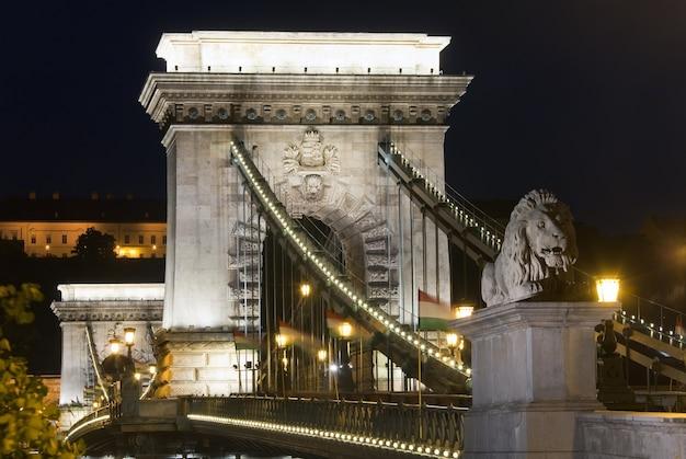 Ungarisches wahrzeichen, budapest kettenbrücke nachtansicht. lange exposition.