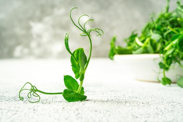 Ungewöhnlich geformte mikro-grünpflanze, die einem balletttänzer ähnelt