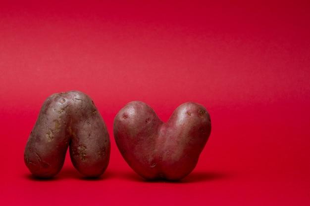 Ungewöhnlich geformtes gemüse. zwei hässliche herzförmige kartoffeln auf einem roten hintergrund. speicherplatz kopieren.