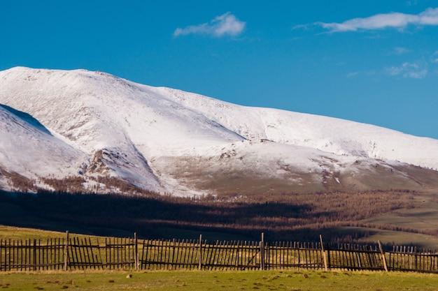 Unglaubliche landschaft des steppengebiets mit seen und bäumen, die sich nahtlos in berge mit schneebedeckten gipfeln verwandeln. berge von altai