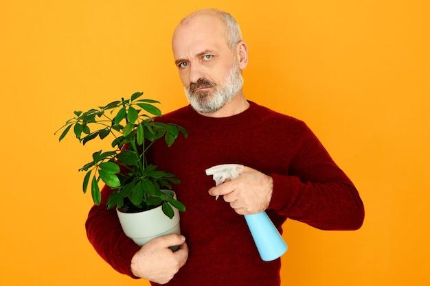 Unglücklicher unzufriedener älterer mann mit bart, der verärgert ist, weil frau ihn veranlasste, sich um zimmerpflanzen zu kümmern.