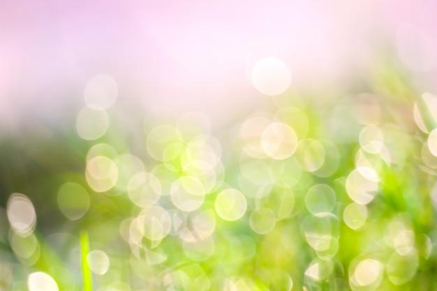 Unschärfe gras und tautropfen fallen auf grüne blätter