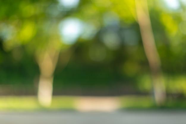 Unscharfe bäume und anlagen in einem park am sonnigen tageshintergrund