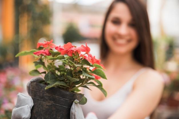Unscharfe junge frau, die frische blühende pflanze anhält