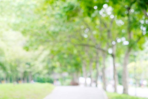 Unscharfer garten im frühling natur im freien hintergrund, unschärfe grüner baumpark im sommer hintergrund, banner, defocus frühlingslaublandschaft mit abstrakter bokeh-lichttapete, poster