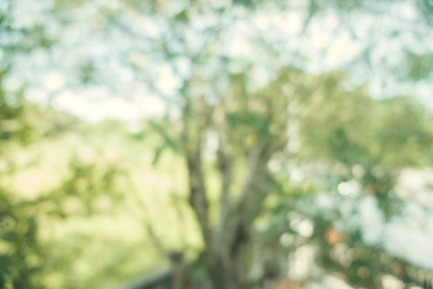 Unscharfer hintergrund: abstraktes naturgrün verwischte hintergrund mit bokeh. frühling. jahrgang gefiltertes bild.