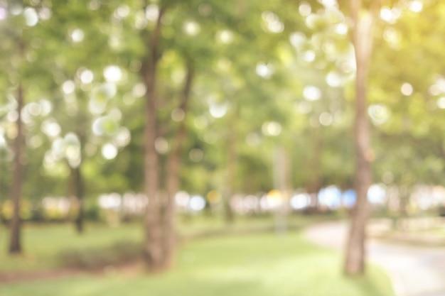 Unscharfer hintergrund der herbstnatur im freien, unschärfefall-grünparkhintergrund
