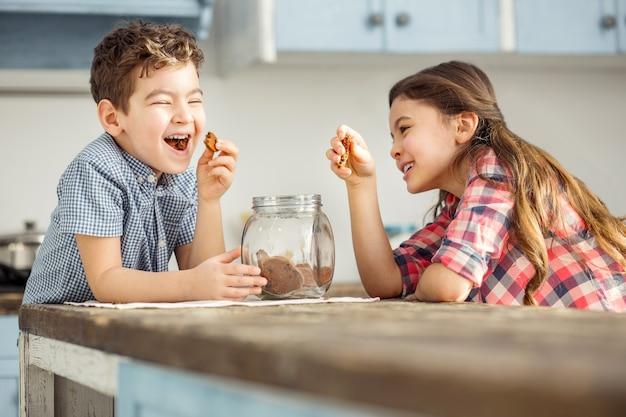 Unterhaltsam. entzückender üppiger kleiner dunkelhaariger bruder und schwester, die lachen und kekse essen, während sie am tisch sitzen