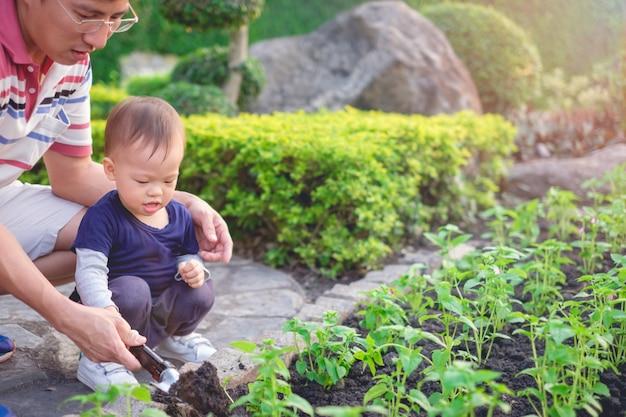 Unterrichtender kleinkindjunge des asiatischen vaters, der jungen baum auf schwarzem boden im grünen garten pflanzt
