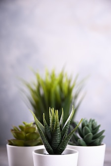 Unterschiedliche form des grases der künstlichen blumen in einem topf auf hölzernem hintergrundabschluß oben mit kopienraum und -text