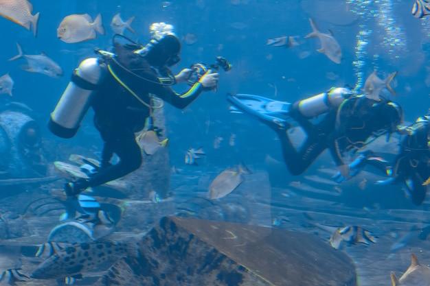 Unterwasserfotografen bei tauchgängen. taucher mit kamera umgeben von vielen fischen im riesigen aquarium. atlantis, sanya, hainan, china.