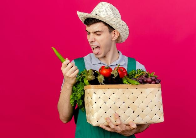 Unzufriedener junger männlicher gärtner, der gartenhut trägt, steckt heraus zunge hält gemüsekorb und paprika
