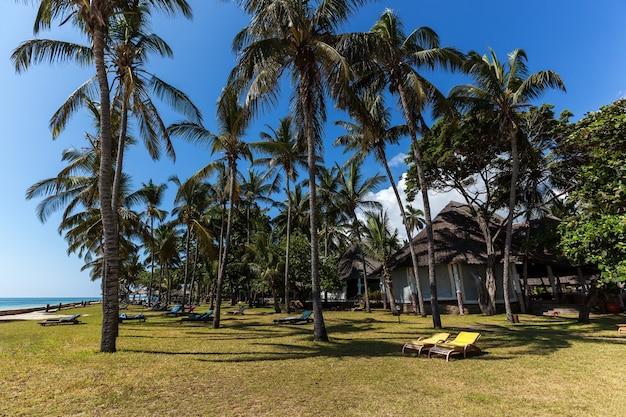 Urlaub unter palmen, perfekter ort für urlaub ist auf einer insel mit palmen, bungalow und lounge, afrika, kenia, mombasa, hotels in der umgebung, hotel mambasa territoriumhotels in afrika mit einem großen territorium