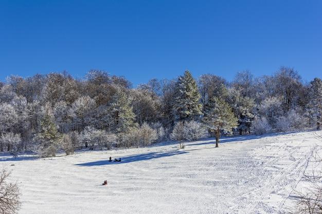 Urlauber touristen mit kindern fahren auf einem aufblasbaren schlitten auf einem schneebedeckten hang an einem wintertag