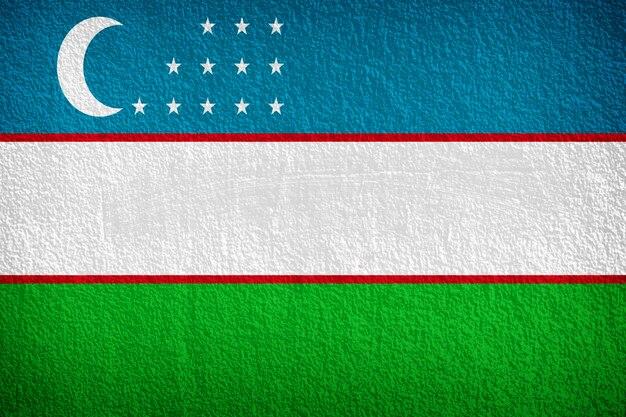 Usbekistan-flagge gemalt auf grunge wand