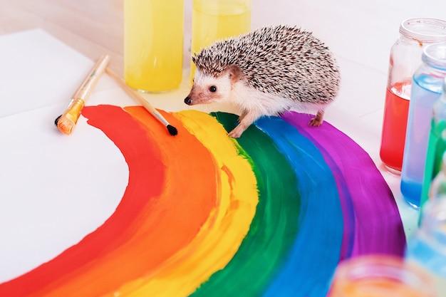 Сute igel läuft um den regenbogen. kleines haustier. grelle farbe. stolz tag. gay pride lgbtq flagge.